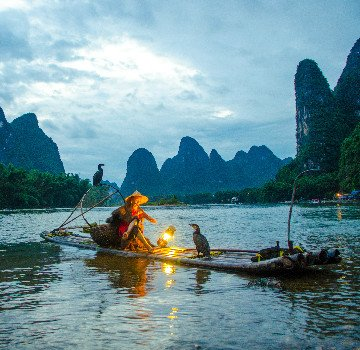 cormorant fisherman in Li River